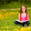 Stock Photo: Little girl sits on a grass and reads the book