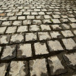 Cobblestone. Paving stones texture. — Stock Photo