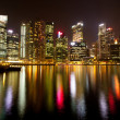 A view of Singapore business district in the night time with water reflections. — Stock Photo #19461305