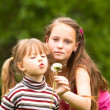 Cute 5 year old and 11 year old (looks into the camera) girls blowing dandelion seeds away. - Stockfoto