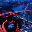 Aerial view on Singapore Flyer from roof Marina Bay Sands at night.  — Stockfoto