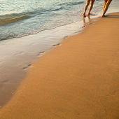 Footprints on the beach left behind couple of walking along the sand beach, soft wave of the sea — Stock Photo