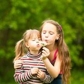 Cute 5 year old and 11 year old girls blowing dandelion seeds away. — Stok fotoğraf