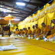 Ceremony Wat Klong Prao monastery after Chang Buddha festival — Stockfoto