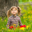 Lovely five-year girl sitting in grass — Stock Photo