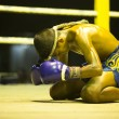 CHANG, THAILAND - FEB 22: Unidentified young Muaythai fighter in ring during match, Feb 22, 2013 on Chang, Thailand — Stock Photo