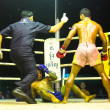 CHANG, THAILAND - FEB 22: Unidentified Muay Thai fighters compete in an amateur kickboxing match, Feb 22, 2013 on Chang, Thailand - 图库照片