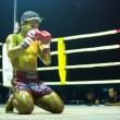 CHANG, THAILAND - FEB 22: Unidentified Muaythai fighter in ring during match, Feb 22, 2013 on Chang, Thailand — Stock Photo