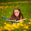 Teen-girl reads a book in the meadow. — Stock Photo #21918613