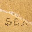 SEX - written in sand on beach texture - soft wave of the sea - Stock Photo