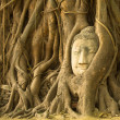 Stock Photo: Head of Buddhin Wat Mahathat, Ayutthaya, Thailand