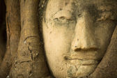 Gros plan tête de bouddha au wat mahathat, ayutthaya, thaïlande. — Photo