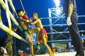 CHANG, THAILAND - FEB 22: Unidentified Muay Thai fighters compete in an amateur kickboxing match, Feb 22, 2013 on Chang, Thailand. Muay Thai practiced over 120000 fans and nearly 10000 professionals. — Stok fotoğraf