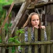 Teengirl standing near vintage rural fence. — Stock Photo #24704705