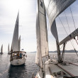 Sailing regatta in Greece — Stok fotoğraf