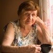 Portrait of an elderly woman — Stock Photo #25880469