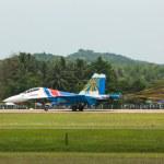 Plane of Team Russian Knights landing — Stock Photo