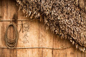 House of Orang Asli village in Malaysia — Stock Photo