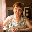 Portrait an old woman at her home — Stockfoto #25973497
