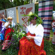 TERVENICHI, RUSSIA - JUL 7: Local people celebrated Ivan Kupala Day, Jul 7, 2013, Tervenichi, Russia. The celebration relates to the summer solstice and includes a number of fascinating Pagan rituals. — Foto de Stock