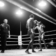CHANG, THAILAND - FEB 22: Unidentified Muaythai fighter in ring during match (black and white high-contrast series), Feb 22, 2013 on Chang, Thailand. — Stock Photo