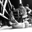 CHANG, THAILAND - FEB 22: Unidentified Muaythai fighter in ring during match (black and white high-contrast series), Feb 22, 2013 on Chang, Thailand. — Stok fotoğraf