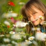 Little girl among wildflowers — Stock Photo #28999427