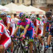 Постер, плакат: 70th Tour de Pologne 2013