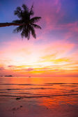 Beautiful sunset on the ocean, natural composition (vertical frame) — Stock Photo