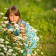 Portrait of little girl among wildflowers  — Stok fotoğraf