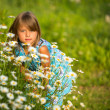 Portrait of little girl among wildflowers — Stockfoto