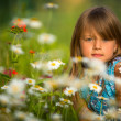 Little girl among wildflowers  — Foto Stock