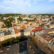 LVOV, UKRAINE — Stock Photo #29392781