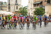 Tour de Pologne — Photo