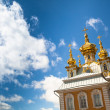 Peterhof — Stock Photo #29476629