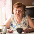 Portrait an elderly woman — Stockfoto