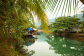 Fishing village in the tropics of Thailand — Stock Photo