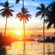 Sunset at beach luxury resort in tropics. — Stock fotografie #30693037