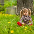 Lovely five-year girl sitting in grass — Stock Photo #31119165