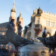Stock Photo: View of Main Square in Krakow