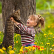 Lovely little girl playing with a cat — Stockfoto