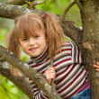Stock Photo: Lovely little girl posing sitting on tree in garden.