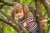 Lovely little girl posing sitting on a tree in the garden. — Stock Photo