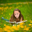 A girl reads a book in the meadow. — Stok fotoğraf