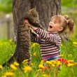 Stock Photo: Emotional little girl playing with cat in park.