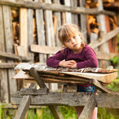 Lovely child and firewood. — Stock Photo