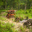 Stock Photo: Cemetery in village Orang Asli in his village