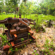 Stockfoto: Cemetery in village Orang Asli in his village