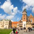 On territory of Royal palace in Wawel — Stok Fotoğraf #31782595