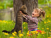 Kid playing with a cat — Stock fotografie